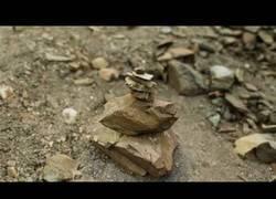 Enlace a No es una piedra, es CGI y vas a alucinar al ver el realismo