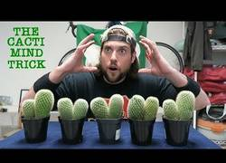 Enlace a Este loco se come diez cactus con la ayuda del poder de su mente y un poco de gaseosa