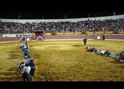 Enlace a Increíble competición de hombres y un toro