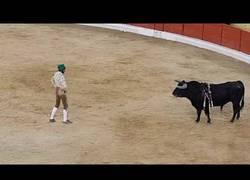 Enlace a El joven torero portugués que murió por el alcance de una cornada en plena faena