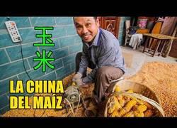 Enlace a China: un país de maíz