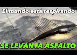Enlace a El mundo empezó a respirar literalmente tras el terremoto en México