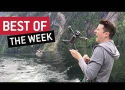 Enlace a Ya están aquí los mejores vídeos de la semana