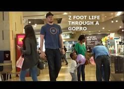Enlace a La vida del hombre de 2,15m a través de un GoPro [inglés]