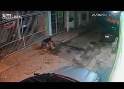 Enlace a Este ladrón se metió en el barrio que no debía y salió mal parado