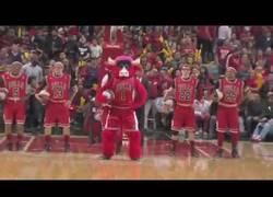 Enlace a Conoce a Benny El Toro, la mascota de los Chicago Bulls