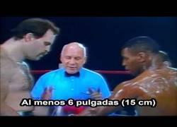Enlace a Así luchaba Mike Tyson con 19 años