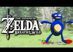 Enlace a ¡Si Sanic estuviera en Zelda: Breath of the Wild!