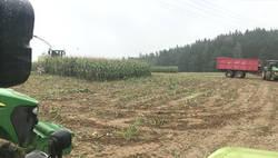 Enlace a La tremenda sorpresa que se encontraron en esta granja mientras recogían maíz