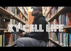Enlace a Un estudiante hizo un rap sobre la vida de las celúlas para clase de biología (inglés)