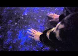 Enlace a La alucinante agua bioluminescente que se encuentra en las Maldivas