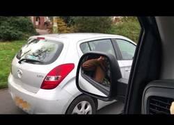 Enlace a ¿Usas el móvil mientras conduces? Pues te troleo