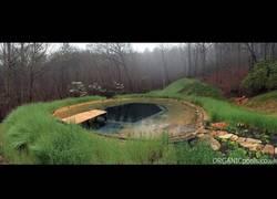 Enlace a Así es como se crea una piscina orgánica