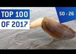 Enlace a Llegan los mejores vídeos del año 2017 (Parte 3)