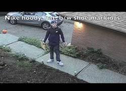 Enlace a Un ladrón profesional de paquetes