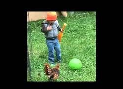 Enlace a La gran diversión entre animales vs niños