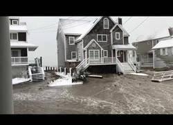 Enlace a Esto es lo que deja una gran tormenta de nieve en Massachusetts