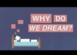 Enlace a ¿Por qué soñamos? (SUB ESP disponibles)