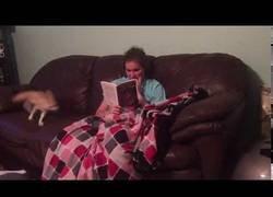 Enlace a Ella solamente quería leer un rato