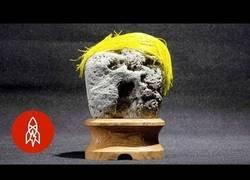 Enlace a Conoce el museo japonés que colecciona piedras que tienen caras