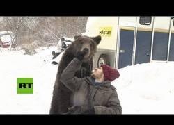 Enlace a Su cuidador tuvo un accidente y este oso empuja de la silla de ruedas para ayudarle