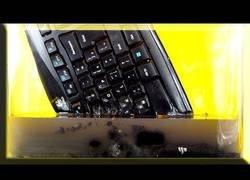 Enlace a Esto es lo que le sucede a un teclado si lo sumerges en acetona