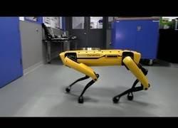 Enlace a Hey tío, ¿me echas una mano? Boston Dynamics sorprenden con su nuevo vídeo