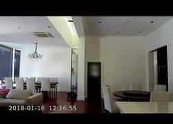 Enlace a Esta cámara de seguridad capta el momento en el que un ladrón roba una casa gateando por el suelo