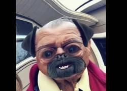 Enlace a La genial reacción de estos abueletes a los filtros de Snapchat