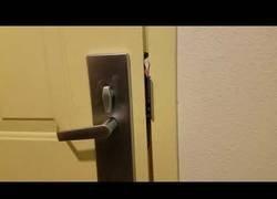 Enlace a Abriendo la puerta del hotel con el menú del mismo en menos de 30 segundos