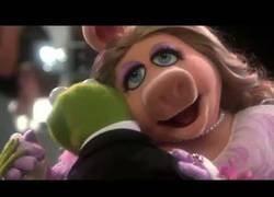 Enlace a Los Muppets interpretan una canción de Rihanna como nunca la habías vivido