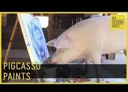Enlace a Se llama Pigcasso y es el cerdito con más arte del mundo