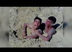 Enlace a Canis atrapados en la arena