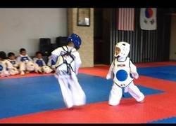 Enlace a La pelea de Taekwondo más adorable vista hasta la fecha