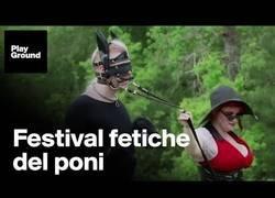 Enlace a ¿Eres fetichista de los ponis? Este es tu festival en Nueva Orleans