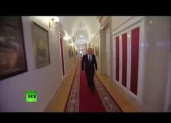 Enlace a Putin dándose paseos con los Bee Gees de fondo es lo mejor que has visto en mucho tiempo