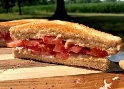 Enlace a El sandwich de tomate que hará que veas el cielo mientras lo pruebes
