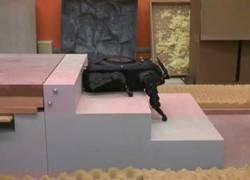 Enlace a Crean un mini perrito robótico capaz de subir escaleras