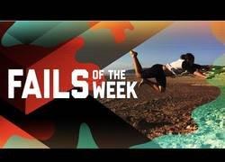 Enlace a Los mejores fails de la semana que hemos podido disfrutar estos días