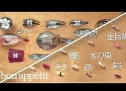 Enlace a Preparando 12 tipos de pescados para hacer sushi