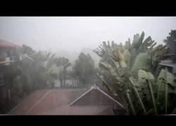 Enlace a La peor tormenta tailandesa