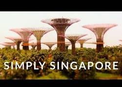 Enlace a Simplemente Singapore