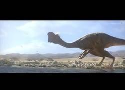 Enlace a Citipati: siguiendo las últimas horas de un dinosaurio antes de extinguirse