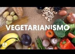 Enlace a Todo lo que tienes que saber sobre la dieta vegetariana