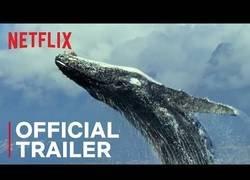 Enlace a Los documentales que se vienen en Netflix con