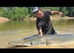 Enlace a El enorme pez que capturaron con 230 libras de peso