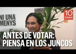 Enlace a La alcaldesa de Barcelona insulta al PSOE