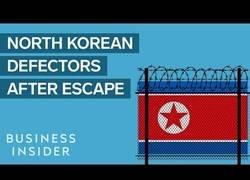 Enlace a Esto le pasa a los norcoreanos que intentan escapar de Corea del Norte