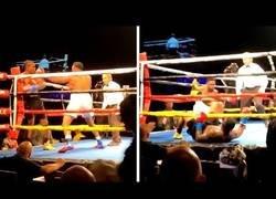 Enlace a Dos boxeadores se autoknockean al mismo tiempo