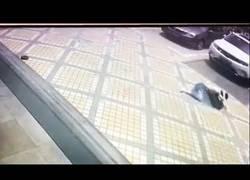 Enlace a Cae una pesa desde un edificio de 30 pisos y golpea a una mujer que pasaba en la cabeza